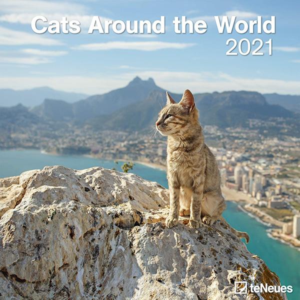 Calendario 2021 Cats around the world
